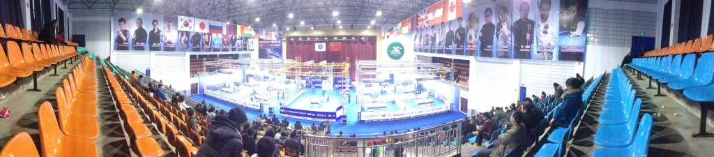 china billiard world championship 8 ball 2015 panorama venue